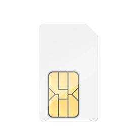 Fixed IP SIM Cards
